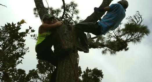 Venciendo mi miedo a las alturas