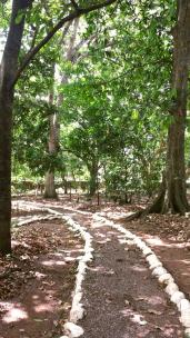 Jardín Botánico Casa Galeano